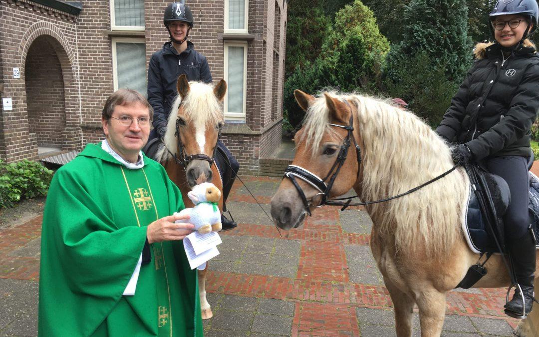 Gezegende dierendag in Hooglanderveen